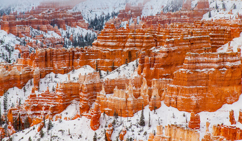 Leinwand Poster  Snow Striations - An overnight snowfall highlights the striations and cliff bands in the sandstone of Bryce Canyon, Utah