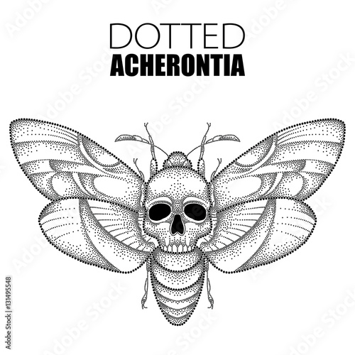 Photo Vector drawing of dotted black Death's head hawk moth or Acherontia atropos isolated on white background