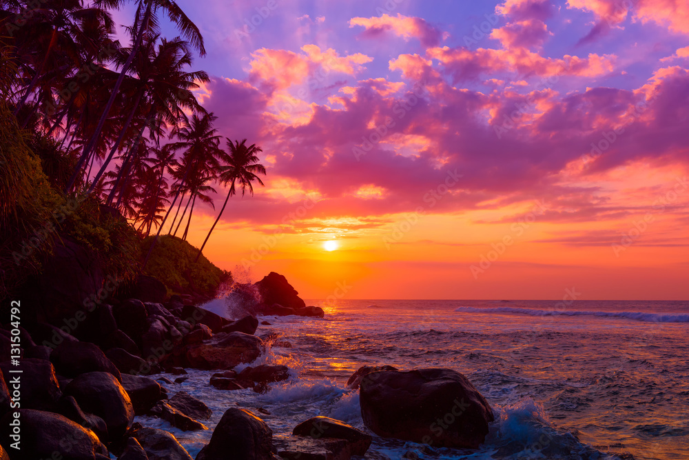 Fototapeta Palm tress on tropical coast at sunset
