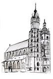 Szkic kościoła Mariackiego w Krakowie. Rysunek na białym tle - 131517362