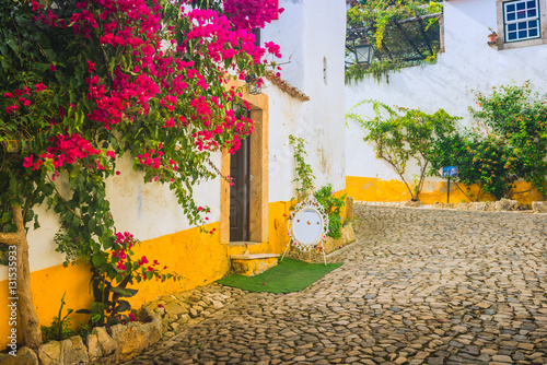 Fototapeten Schmale Gasse Beautiful narrow streets in the medieval town of Obidos. Portugal