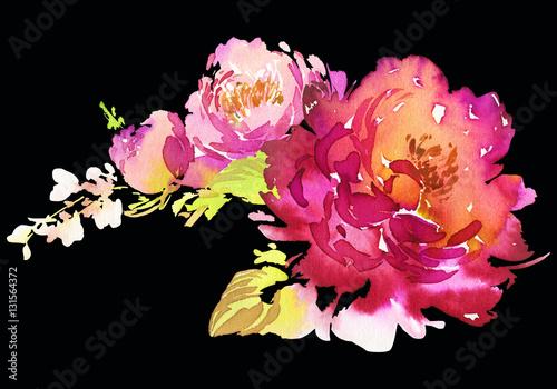 Fototapety, obrazy: Flowers watercolor illustration