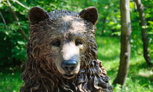 Carved Wooden Bear Head In Park