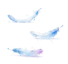 Set Of Watercolor Feathers, Hand Painted