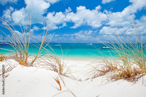 Obraz na plátně Beautiful blue water of Whitehaven Beach in the Whitsundays