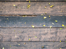 Wood Texture Background, .horizontal Line, With Little Leaves