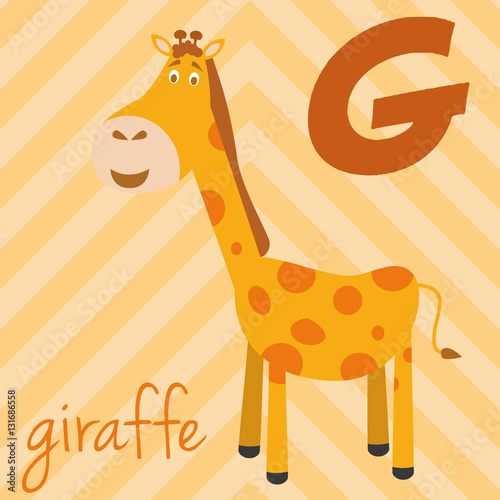 Photo  Cute cartoon zoo illustrated alphabet with funny animals: G for Giraffe