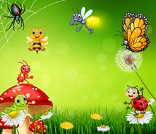 Cartoon Small Insect With Natu...