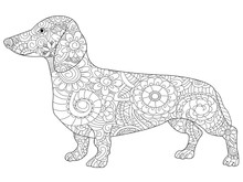 Dachshund Coloring Book For Ad...