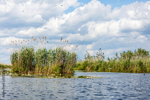 Landscape photo of Danube Delta