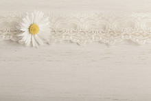 Daisy Flower On Wooden Backgro...