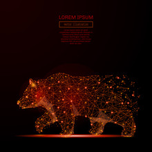 Abstract Mash Line And Point Bear In Flames Style On Dark Background With An Inscription. Business Strength And Power Of A Starry Sky Or Space Consisting Of Stars And The Universe. Vector Illustration