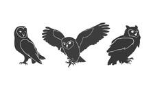 Owl Silhouettes On The White B...