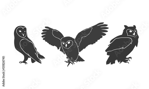 Canvas Prints Owls cartoon owl silhouettes on the white background