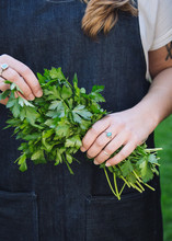 A Chef Holds A Bunch Of Parsley