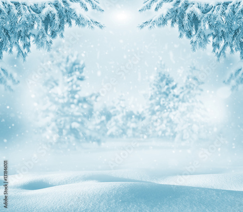 Printed kitchen splashbacks Light blue Winter bright background. Christmas landscape with snowdrifts and pine branches in the frost.