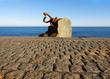 """Sculpture """"Peine del Viento"""" in San Sebastian, Basque Country, Spain"""