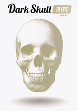 Engraving Gold Skull Front View On White BG
