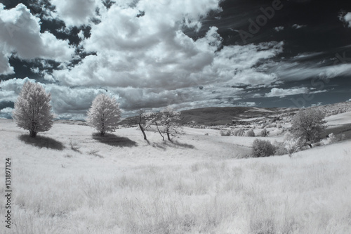 Infrared landscape and details Canvas Print