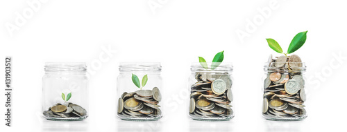 Fotografie, Obraz  Money saving growth concepts, glass jar with coins and plants growing, isolated