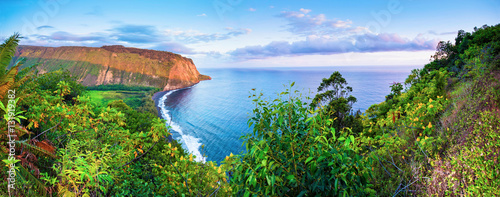 Waipio Valley (Island of Hawaii)