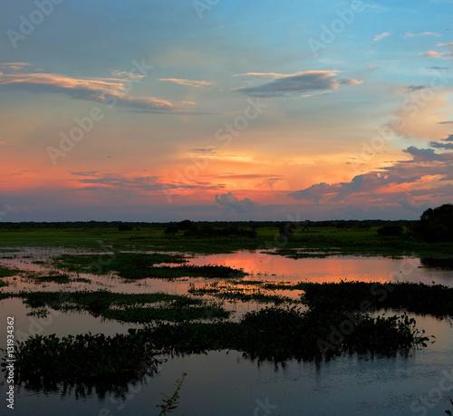Staande foto Afrika Sunset in the world of water of the El Cedral - Los Llanos, Venezuela, South America