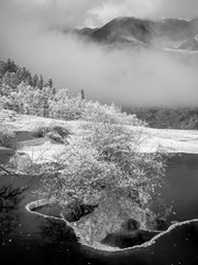 Obraz na PlexiHuanglong National Park near Jiuzhaijou - SiChuan, China (shot in the far infrared region of the spectrum)