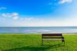green grass field near sea and bright blue sky