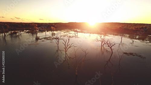 Photo sur Toile Gris traffic bush sunset