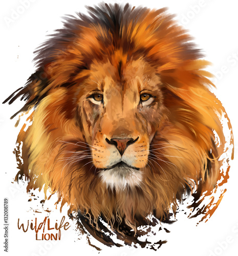 Fototapety, obrazy: Lion watercolor illustration