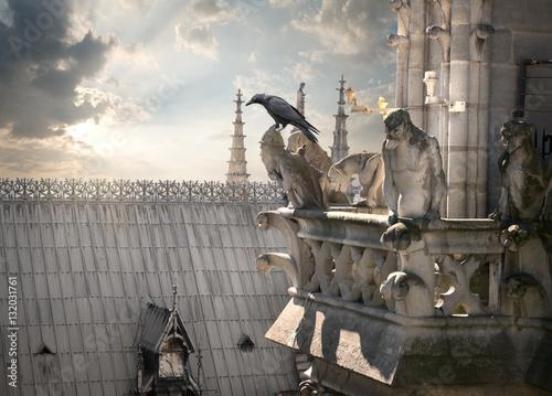 Obraz na plátne Chimeras on Notre Dame