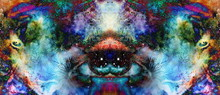 Psychedelic Eyes On Multicolor...