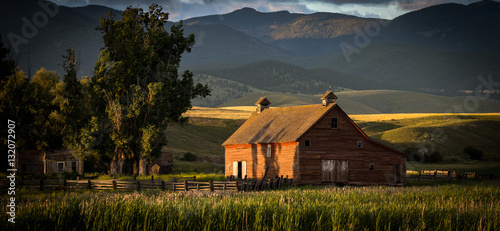 Montana Homestead