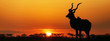 canvas print picture - South Africa Sunset Kudu Silhouette