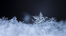 Photo Real Snowflakes During A...