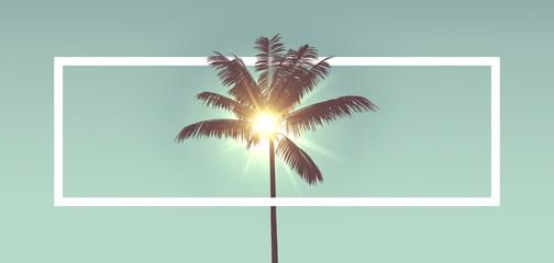 Tropska silueta palme protiv sunčeve svjetlosti. S bijelim okvirom