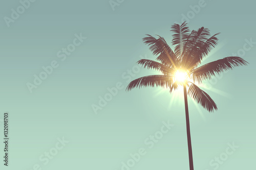 Foto op Aluminium Palm boom Tropical palm tree silhouette against bright sunlight
