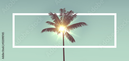 Deurstickers Palm boom Tropical palm tree silhouette against sunlight. With white frame