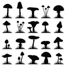 Mushroom And Toadstool Collection - Silhouette Illustration