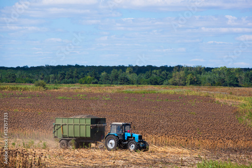Fotografie, Obraz  Big blue tractor rides through the field with a trailer loaded with sunflower seeds