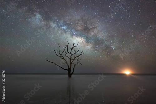 Stampa su Tela  Botany Bay Beach under the Milky Way Galaxy