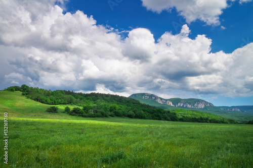 Beautiful mountain landscape with chamomiles and cloudy sky.
