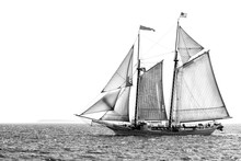 Tall Ship At Sea Black And White Isolated With Copy Space