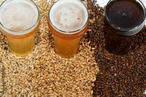Photo Home brew beer ingredients with various grains illustrating different color and