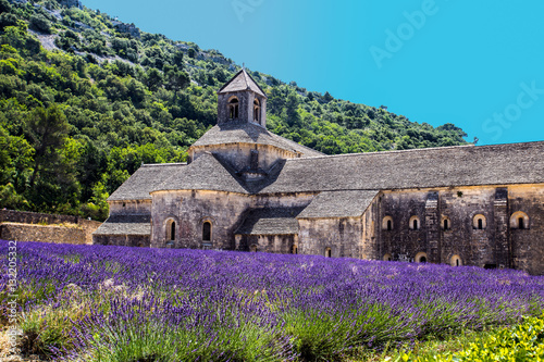 Foto op Aluminium Snoeien Abbey of Senanque and blooming rows lavender flowers. Gordes, Luberon, Vaucluse, Provence, France, Europe.