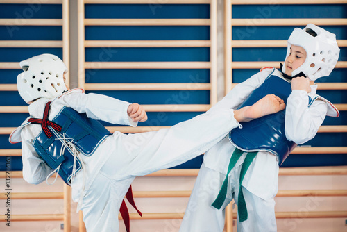 Photo Stands Martial arts Sparing in tae kwon do