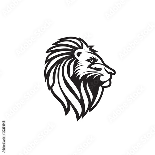 Fototapety, obrazy: Lion head vector logo