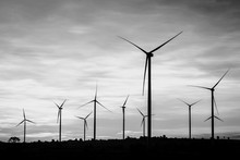 Wind Turbines Power Generator At Wind Farm - Black And White Col