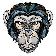 Chimp Head, Illustration