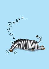 Cute Zebra Vector Illustration